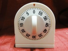 The Wise Dollar Timer
