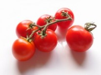 Spring Garden Tomatoes