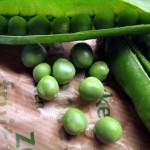 freeze garden vegetables
